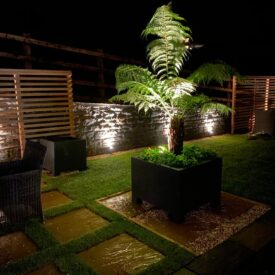 Garden Lights 2